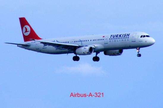 2011-08-cefa-TURKISH AIRLINES - Frankfurter Flughafen