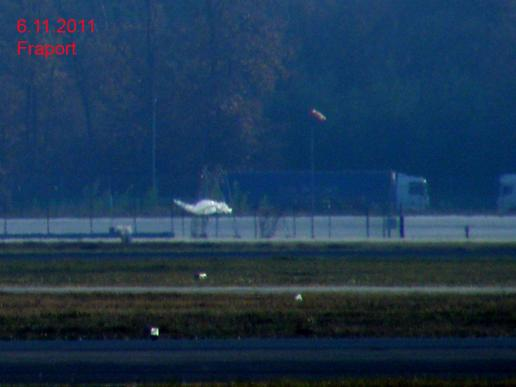 2011-11-ago-Helikopter in Transport-Folie - Flughafen Frankfurt-Sightseeing-Tour